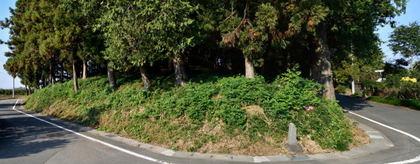 今井神社古墳4.jpg