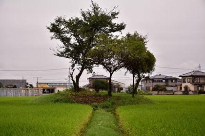 大類村第11号富士塚_002.jpg