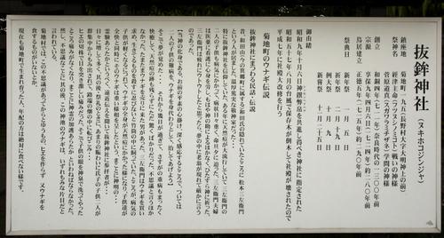 抜鉾神社_002.jpg