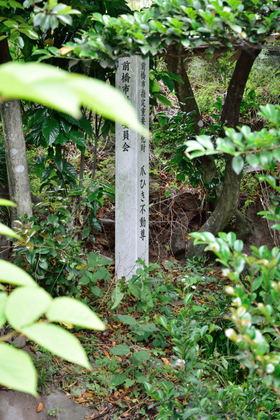 爪ひき不動尊 鼻毛石_010.jpg