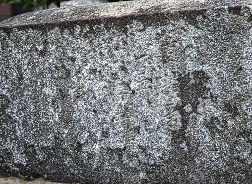 諏訪神社_009.jpg